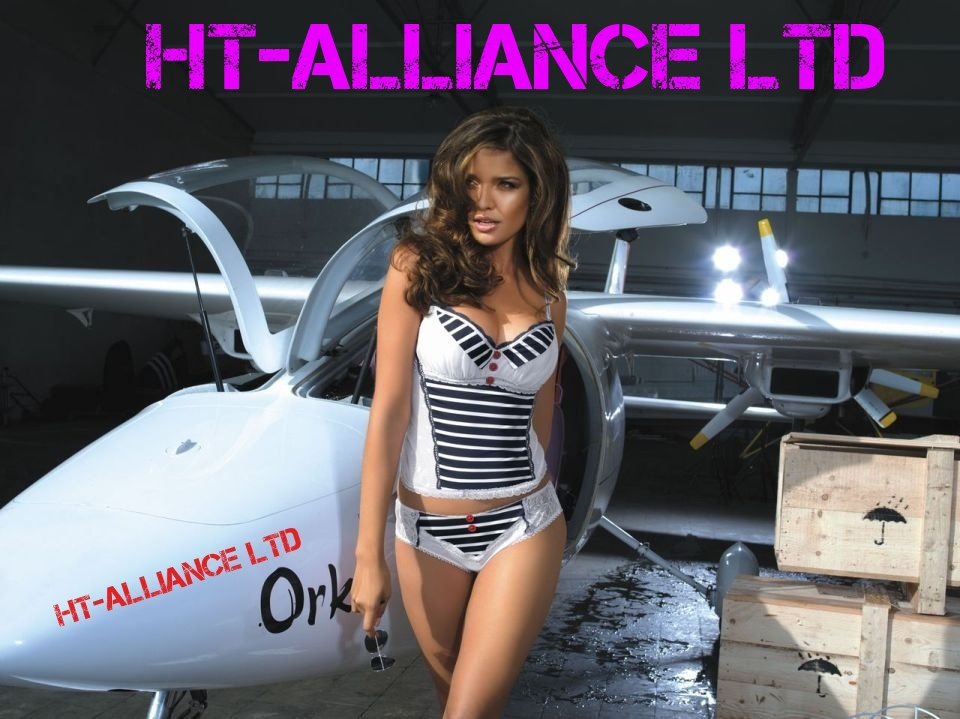 High Tech Alliance LTD